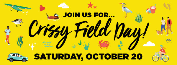 Crissy Field Day Banner