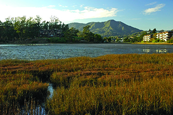 Richardson Bay with Mt. Tam in background